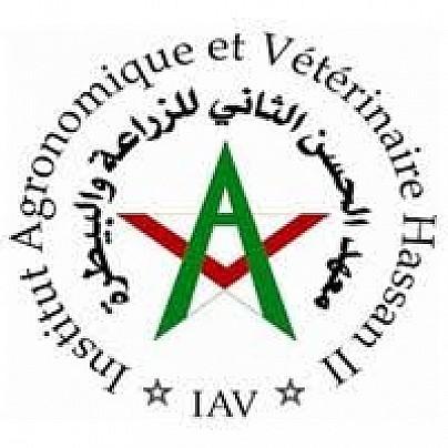 IAV_logo