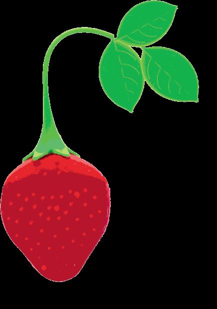 Med-Berry
