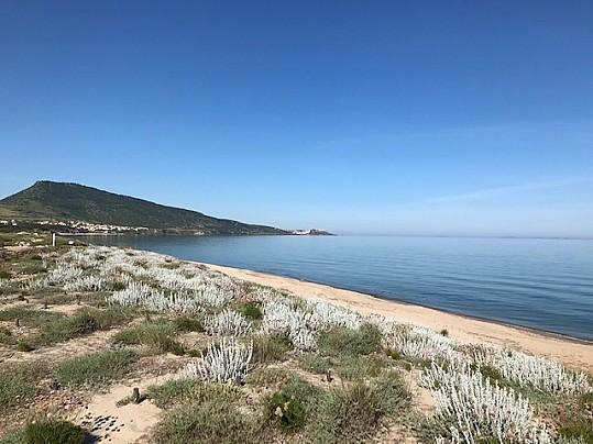 Spiaggia San Pietro1