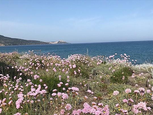 Veduta Spiaggia San Pietro