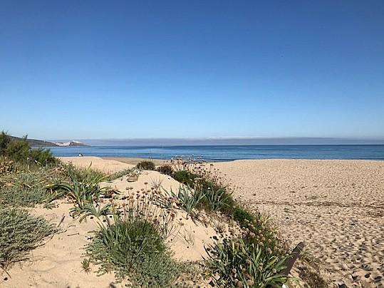 Spiaggia San Pietro 7