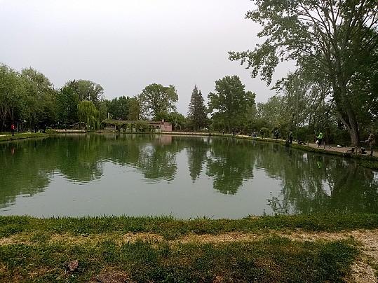 lago zizzella