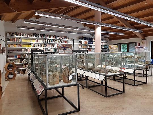 Museo fedrigo 3