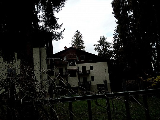 6 La zona dove sorgeva Villa Osio,  con gli abeti cresciuti