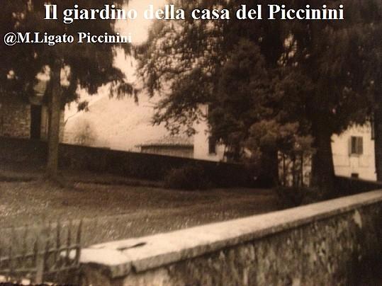 8-Scorcio del giardino antistante casa Piccinini, della famiglia Ligato, Pradalunga