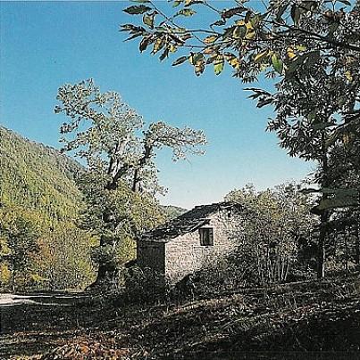 seccatoio_catenaia[1]