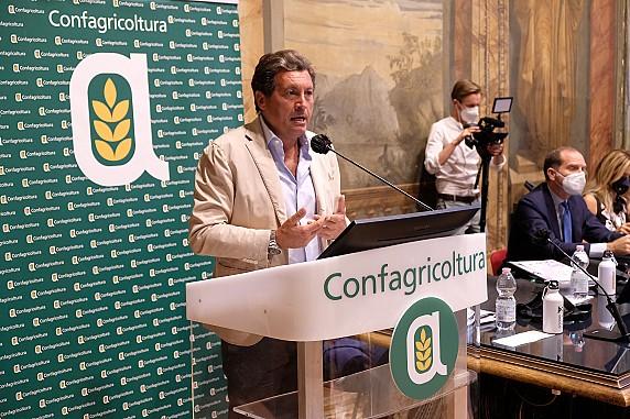 sindaco Mario Agnelli - Castiglion Fiorentino