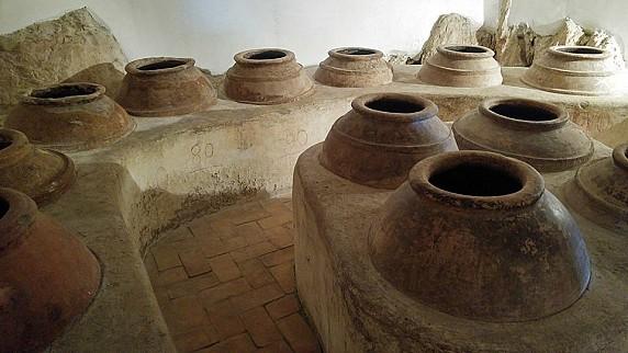 Museo Civico Archeologico_Olearia01
